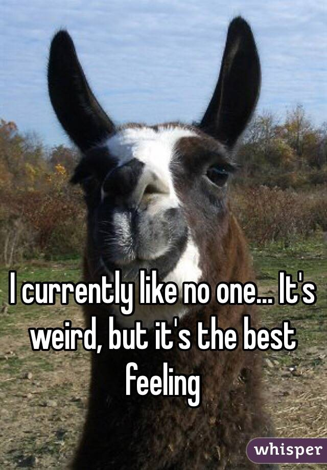 I currently like no one... It's weird, but it's the best feeling