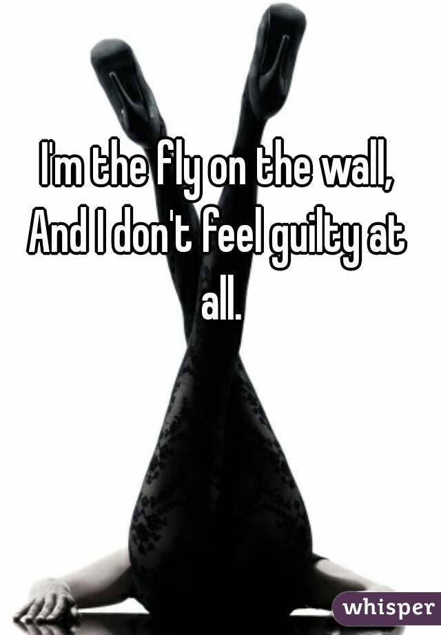I'm the fly on the wall, And I don't feel guilty at all.