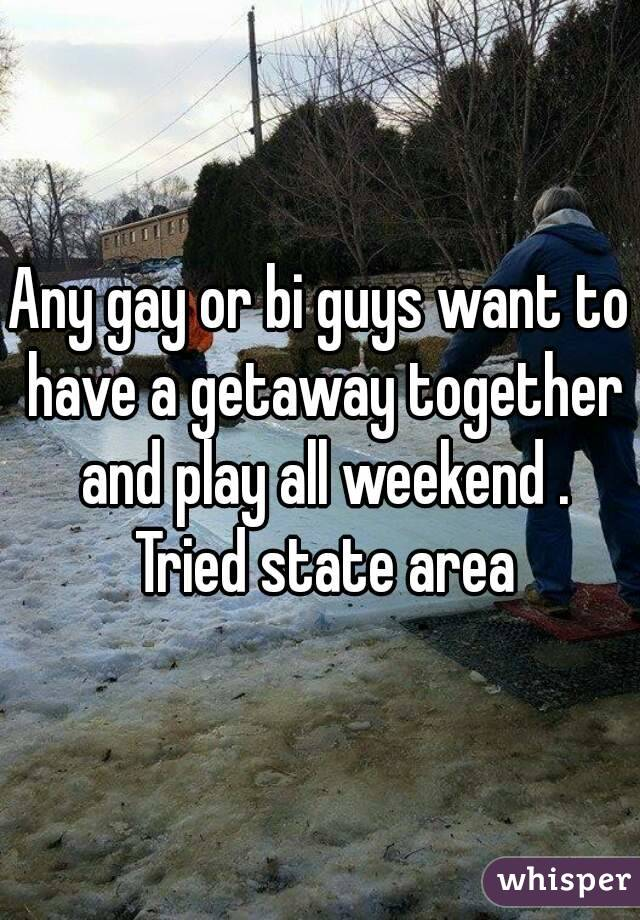 Any gay or bi guys want to have a getaway together and play all weekend . Tried state area