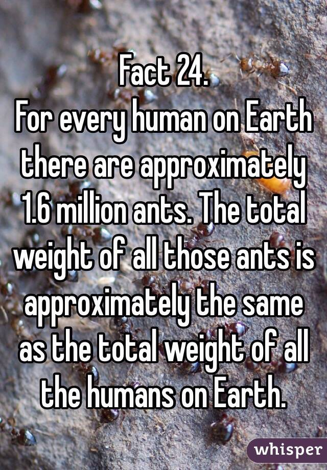 Fact 24. For every human on Earth there are approximately 1.6 million ants. The total weight of all those ants is approximately the same as the total weight of all the humans on Earth.