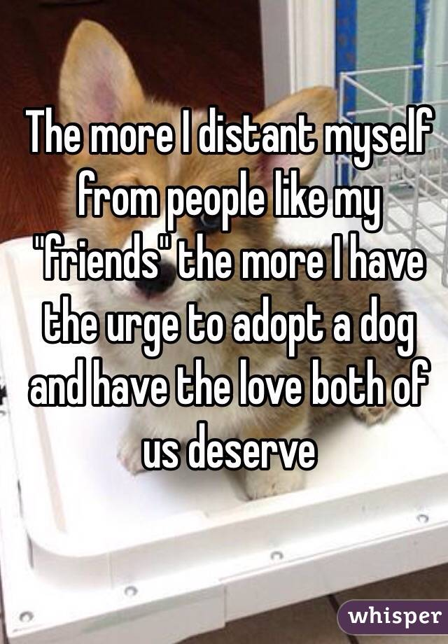 """The more I distant myself from people like my """"friends"""" the more I have the urge to adopt a dog and have the love both of us deserve"""
