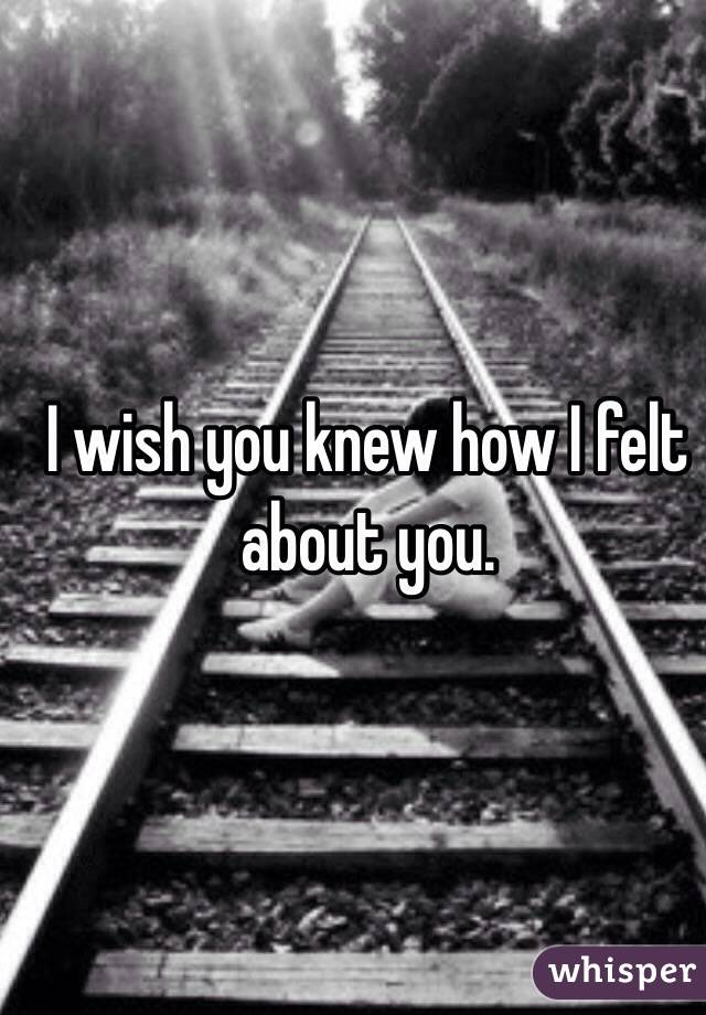 I wish you knew how I felt about you.
