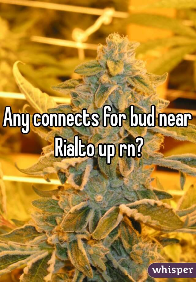 Any connects for bud near Rialto up rn?