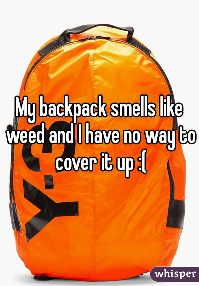 My backpack smells like weed and I have no way to cover it up :(