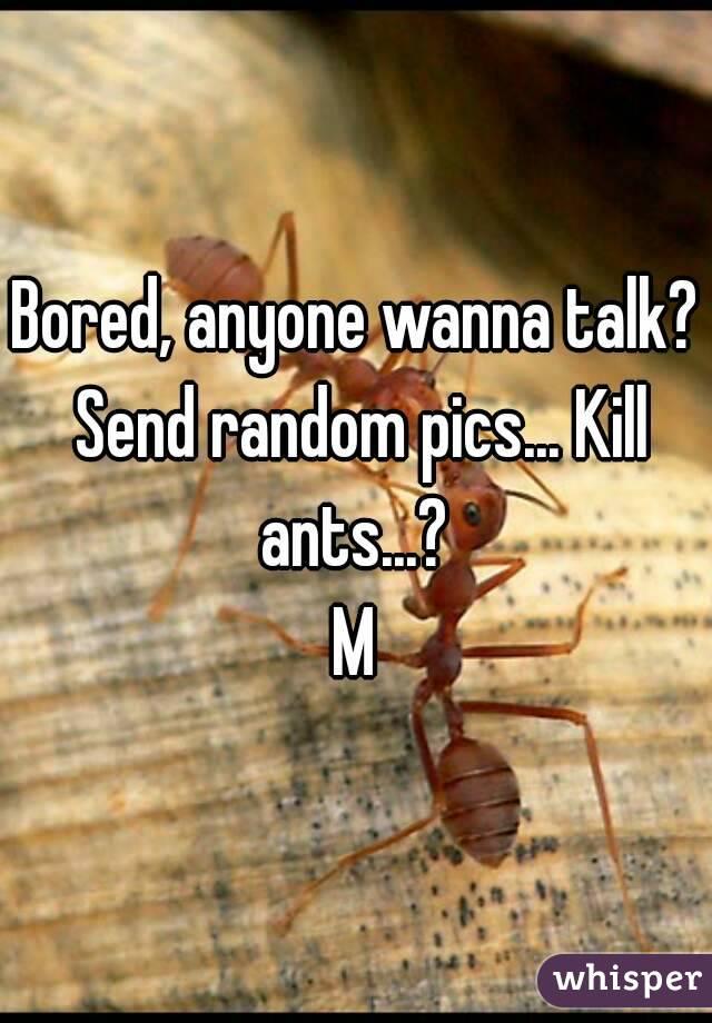 Bored, anyone wanna talk? Send random pics... Kill ants...?  M