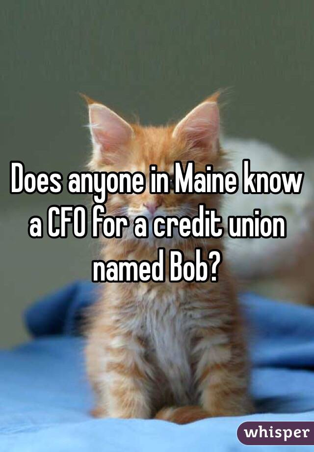 Does anyone in Maine know a CFO for a credit union named Bob?