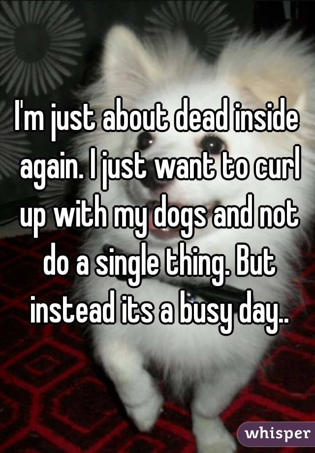I'm just about dead inside again. I just want to curl up with my dogs and not do a single thing. But instead its a busy day..