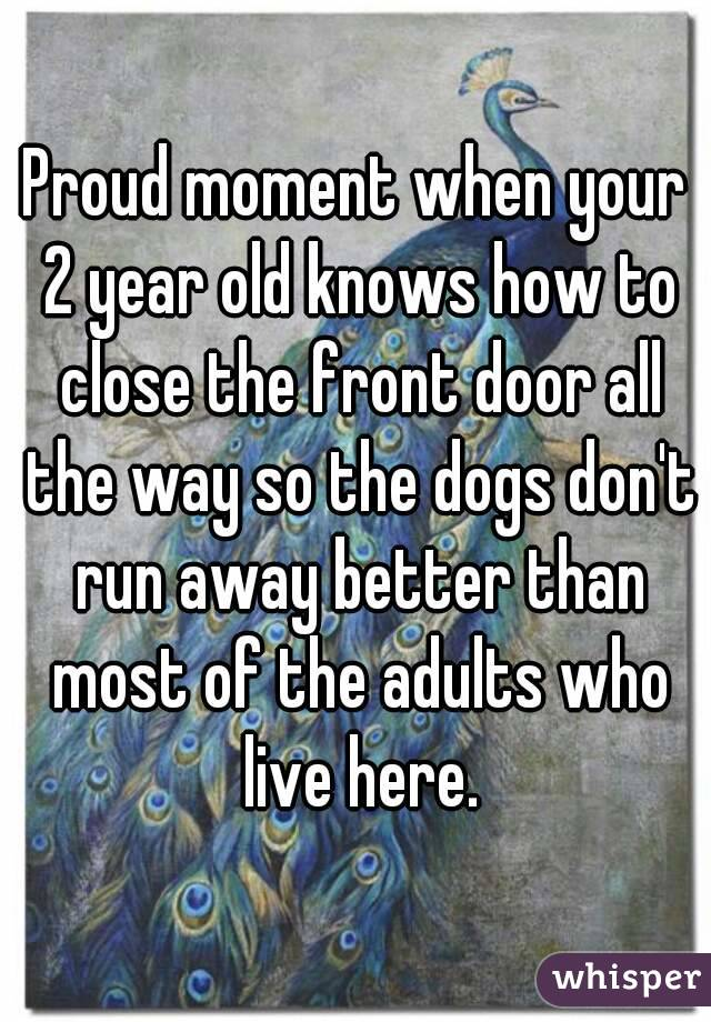 Proud moment when your 2 year old knows how to close the front door all the way so the dogs don't run away better than most of the adults who live here.
