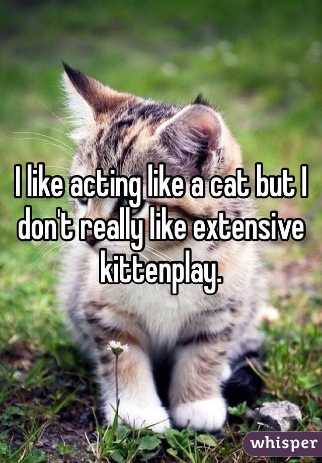 I like acting like a cat but I don't really like extensive kittenplay.