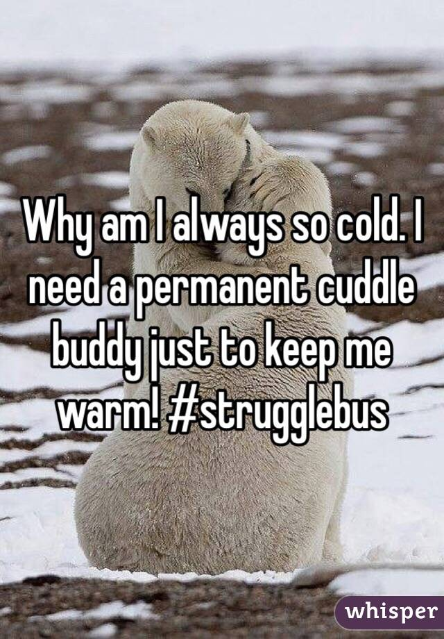 Why am I always so cold. I need a permanent cuddle buddy just to keep me warm! #strugglebus
