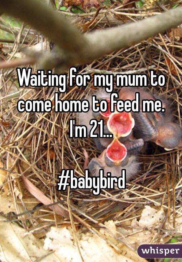 Waiting for my mum to come home to feed me. I'm 21...  #babybird