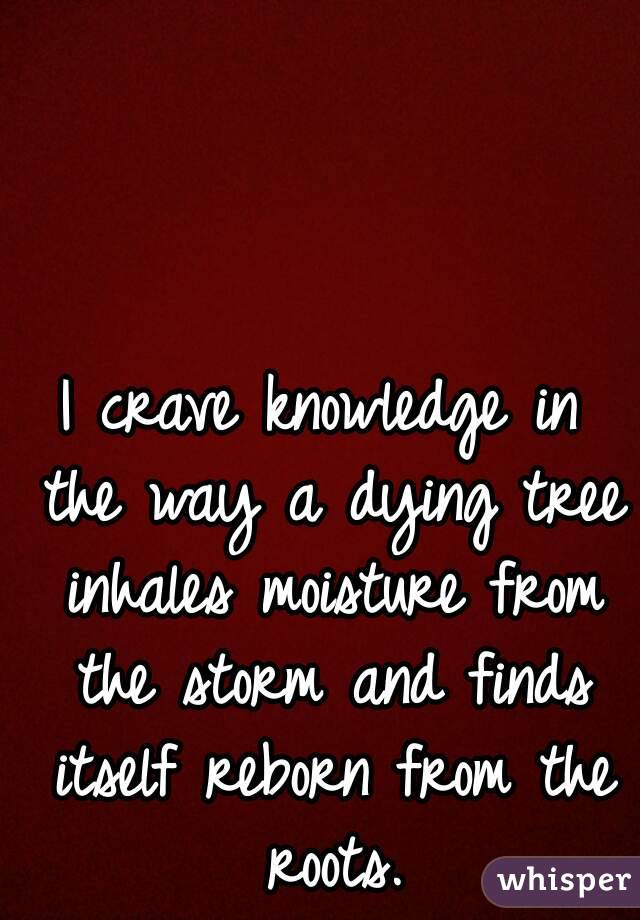 I crave knowledge in the way a dying tree inhales moisture from the storm and finds itself reborn from the roots.