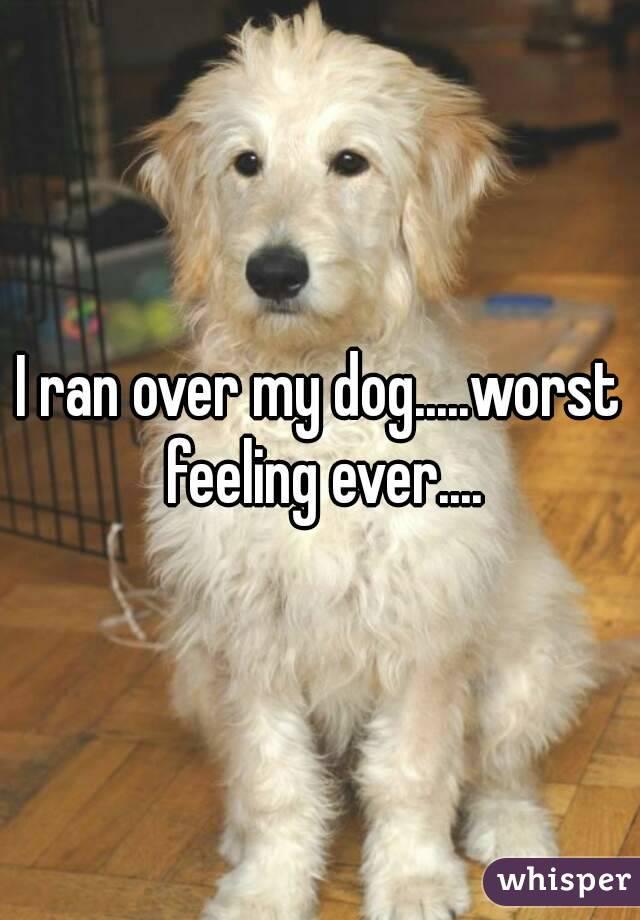 I ran over my dog.....worst feeling ever....