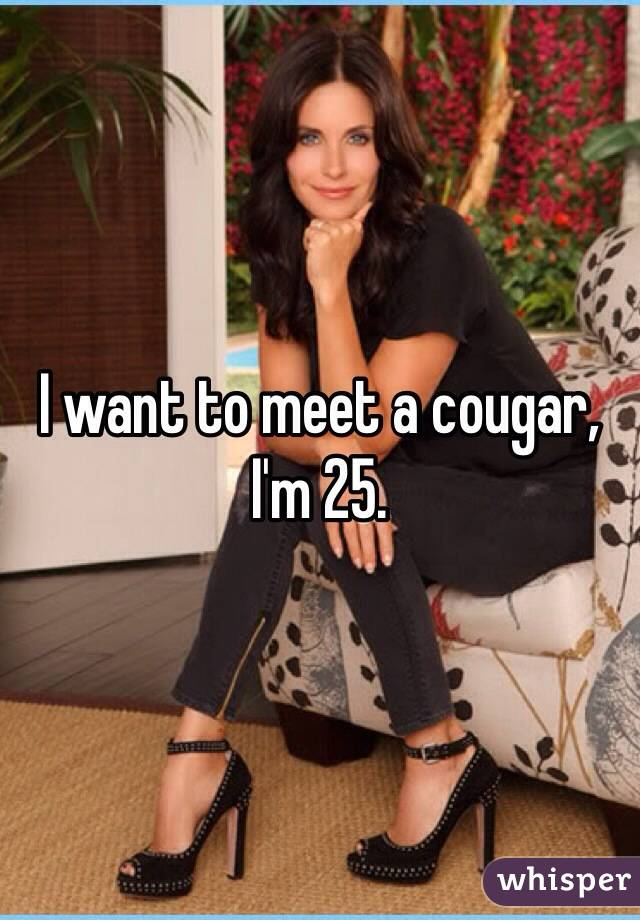 want a cougar
