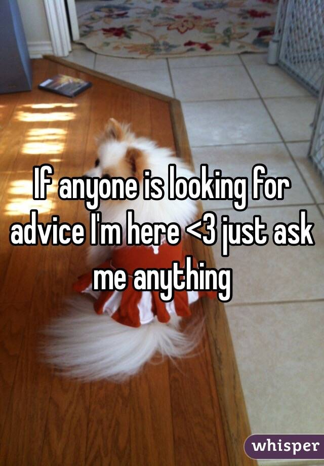 If anyone is looking for advice I'm here <3 just ask me anything