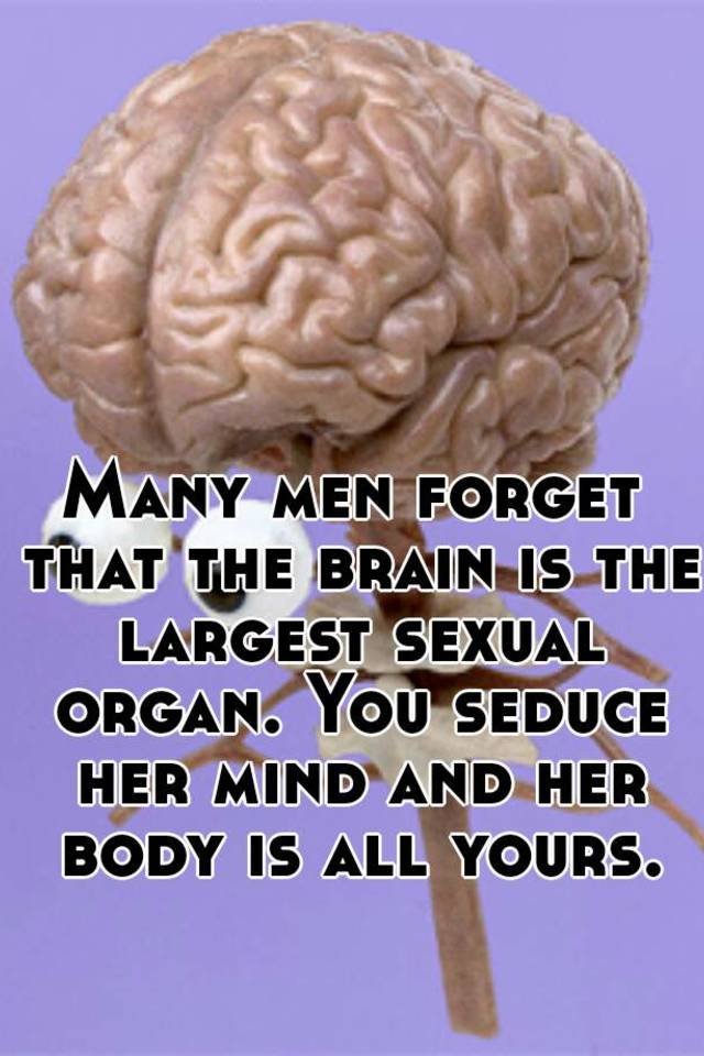 The bodys largest sexual organ