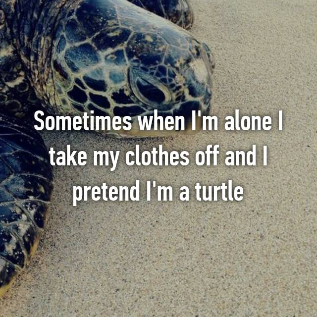 Sometimes when I'm alone I take my clothes off and I pretend I'm a turtle