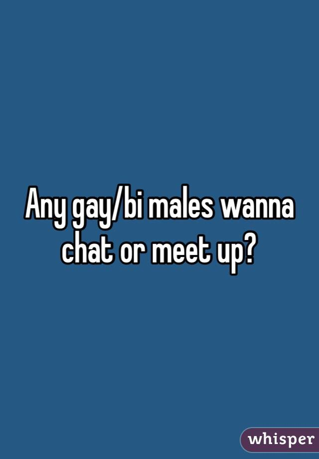 Any gay/bi males wanna chat or meet up?