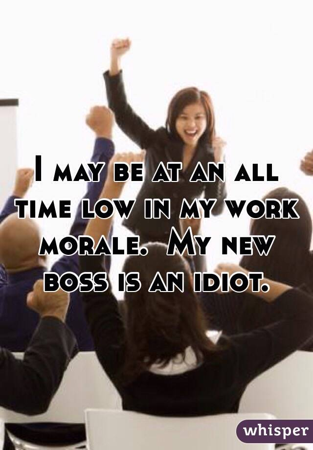 I may be at an all time low in my work morale.  My new boss is an idiot.