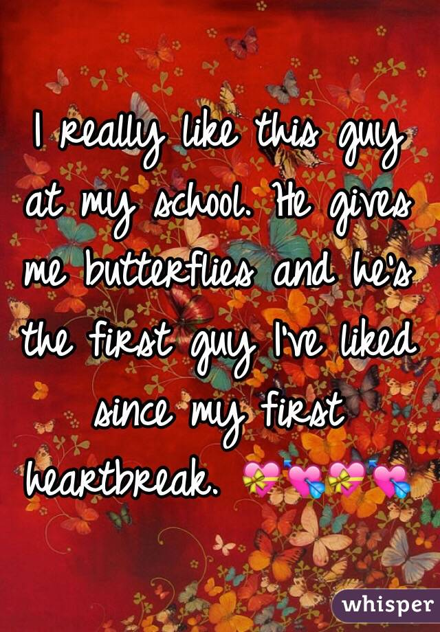 I really like this guy at my school. He gives me butterflies and he's the first guy I've liked since my first heartbreak. 💝💘💝💘
