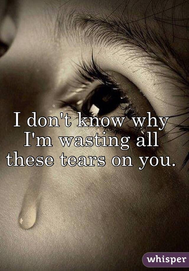 I don't know why I'm wasting all these tears on you.