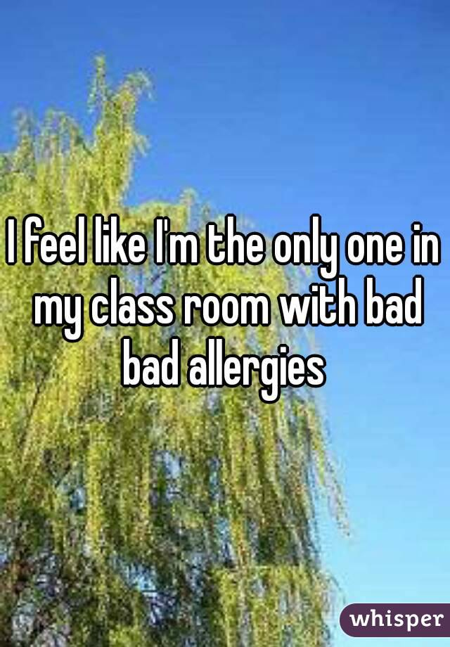 I feel like I'm the only one in my class room with bad bad allergies