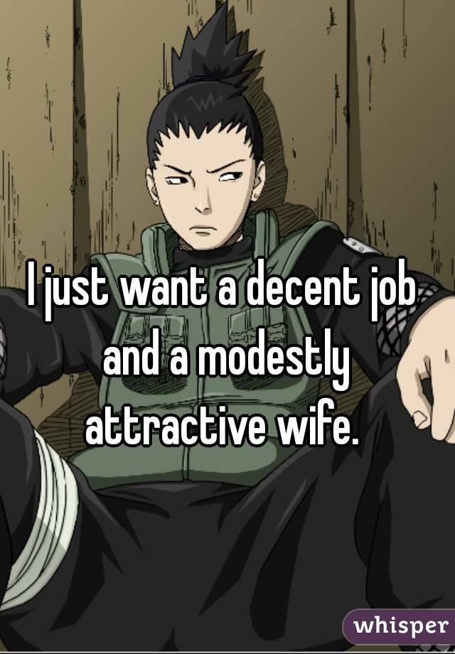 I just want a decent job and a modestly attractive wife.