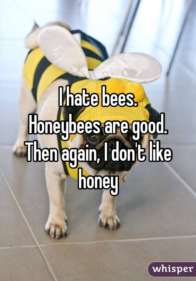 I hate bees. Honeybees are good. Then again, I don't like honey