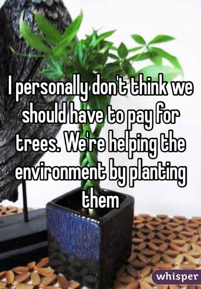 I personally don't think we should have to pay for trees. We're helping the environment by planting them