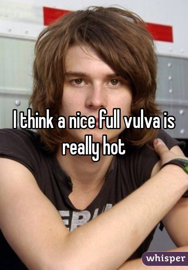 I think a nice full vulva is really hot