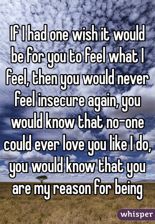 If I had one wish it would be for you to feel what I feel, then you would never feel insecure again, you would know that no-one could ever love you like I do, you would know that you are my reason for being