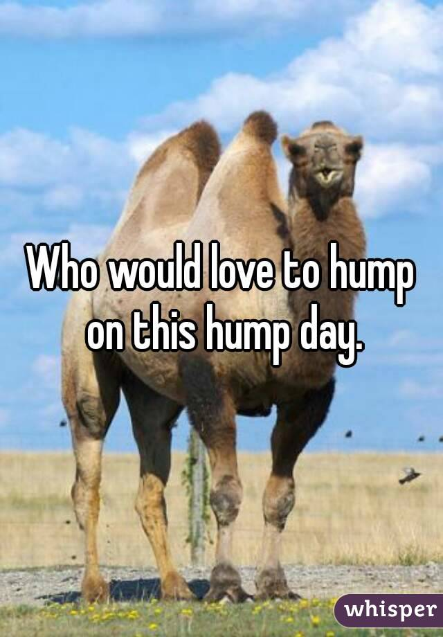 Who would love to hump on this hump day.