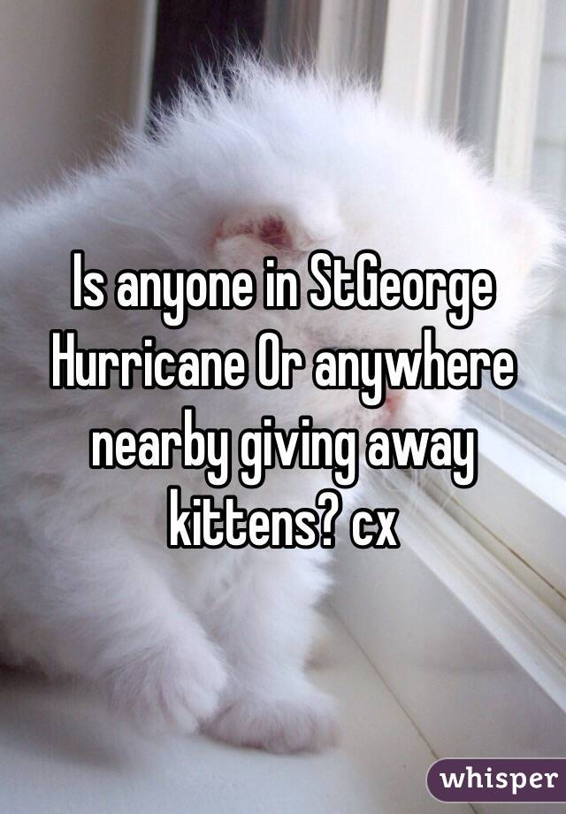 Is anyone in StGeorge Hurricane Or anywhere nearby giving away kittens? cx