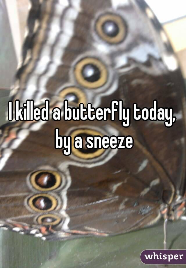I killed a butterfly today, by a sneeze