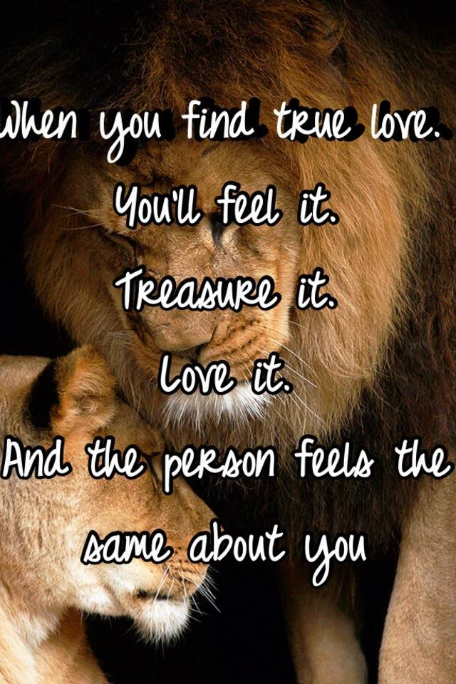 How do u find love