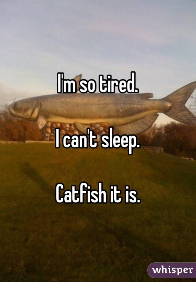 I'm so tired.   I can't sleep.   Catfish it is.