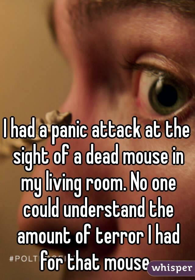 I had a panic attack at the sight of a dead mouse in my living room. No one could understand the amount of terror I had for that mouse.