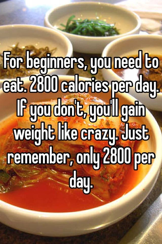 For beginners you need to eat 2800 calories per day if you don for beginners you need to eat 2800 calories per day if you dont youll gain weight like crazy just remember only 2800 per day ccuart Gallery