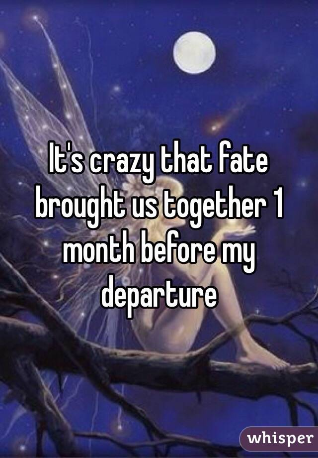 It's crazy that fate brought us together 1 month before my departure