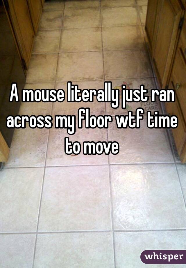 A mouse literally just ran across my floor wtf time to move