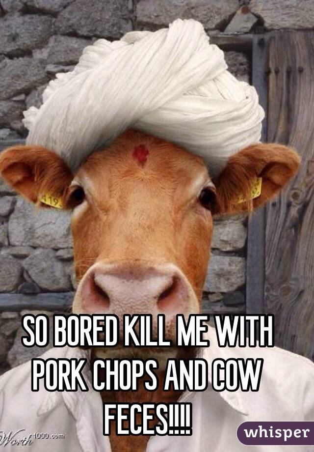 SO BORED KILL ME WITH PORK CHOPS AND COW FECES!!!!