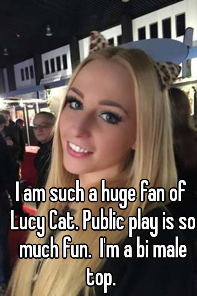 Lucy Cat Potno