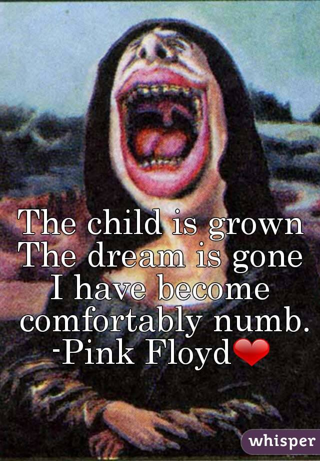 a8cd25f9 The child is grown The dream is gone I have become comfortably numb. -Pink  Floyd❤