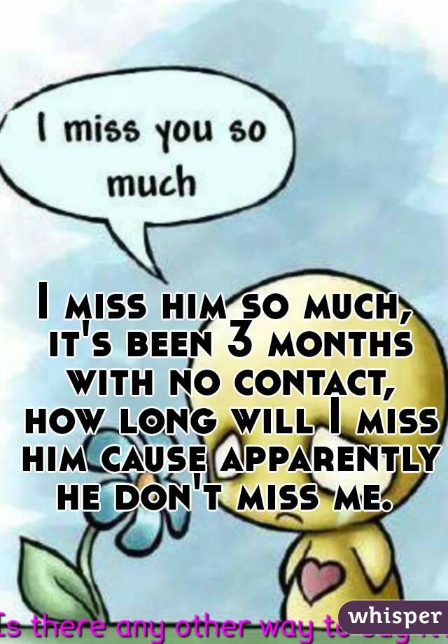 I miss him so much, it's been 3 months with no contact, how