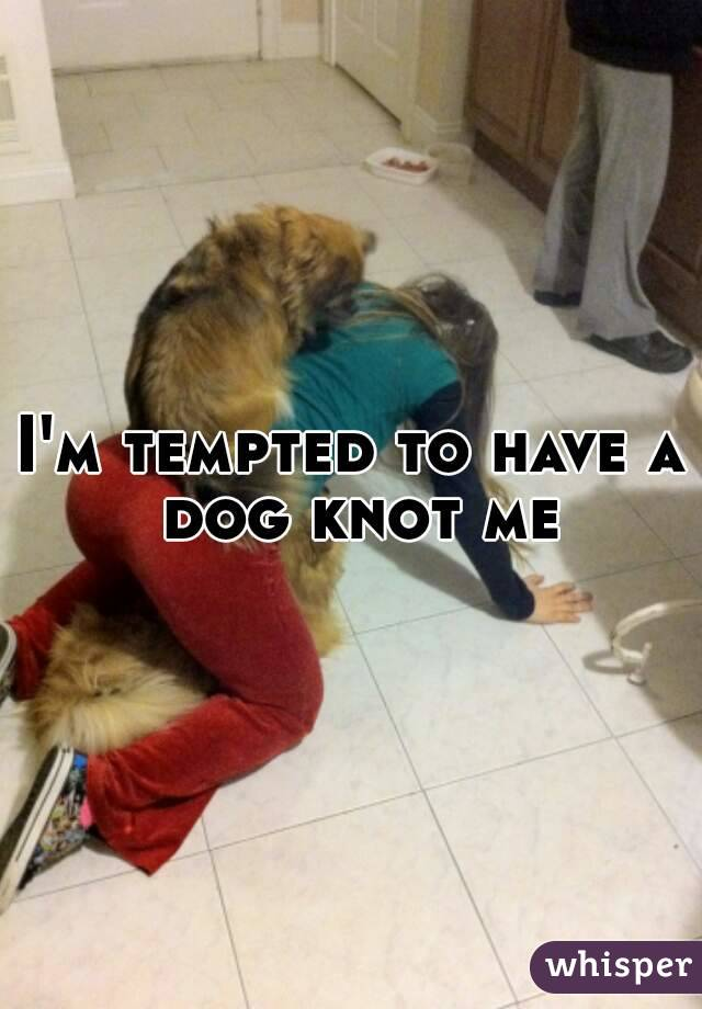 Dog knotted in human