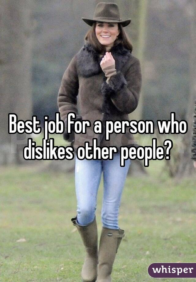 Best job for a person who dislikes other people?