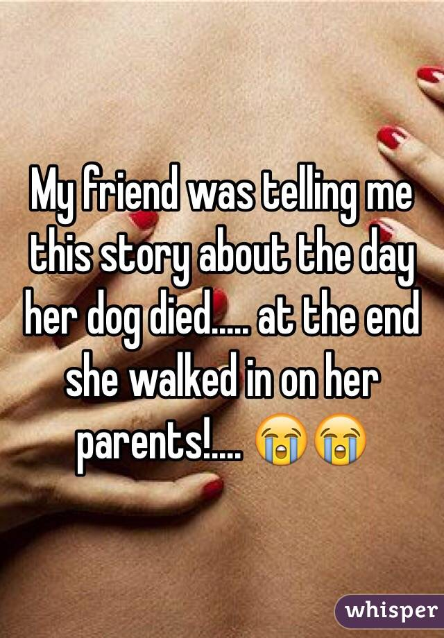 My friend was telling me this story about the day her dog died..... at the end she walked in on her parents!.... 😭😭