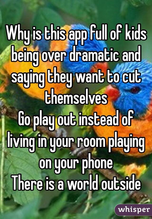 Why is this app full of kids being over dramatic and saying they want to cut themselves  Go play out instead of living in your room playing on your phone  There is a world outside