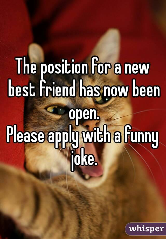 The position for a new best friend has now been open. Please apply with a funny joke.