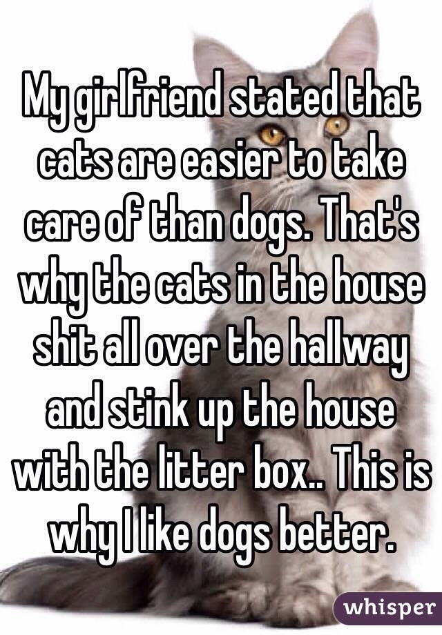 My girlfriend stated that cats are easier to take care of than dogs. That's why the cats in the house shit all over the hallway and stink up the house with the litter box.. This is why I like dogs better.